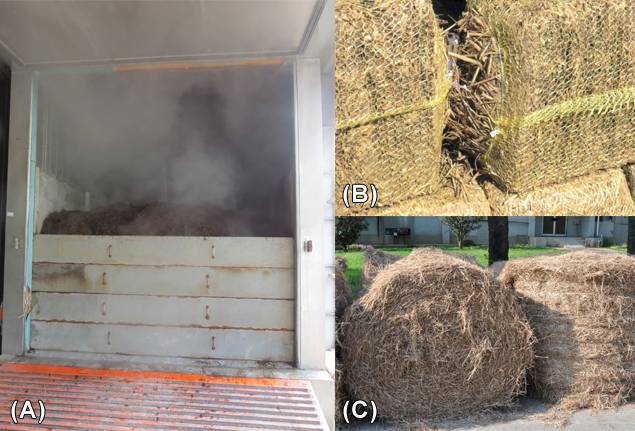Figure 1: (A) Composting in the indoor tunnel